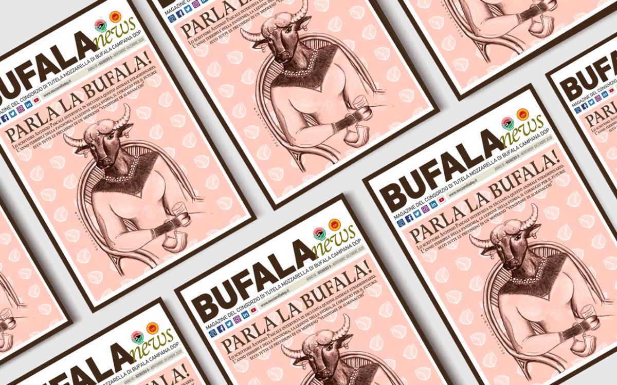 bufalanews-mozzarella-campana-occhiovunque-illustrazione